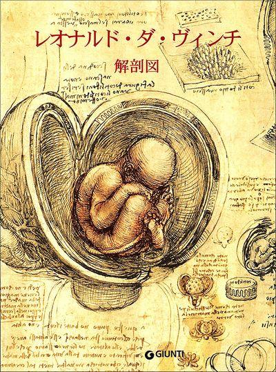 Leonardo. Anatomy (in giapponese)