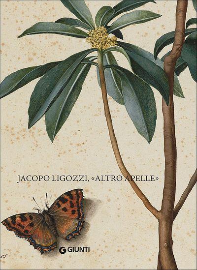 Jacopo Ligozzi, ''altro Apelle''