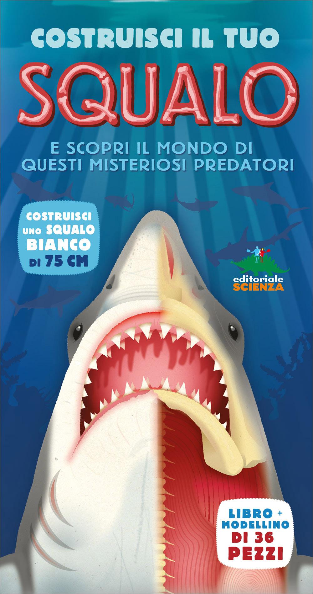 Costruisci il tuo squalo e scopri il mondo di questi misteriosi predatori