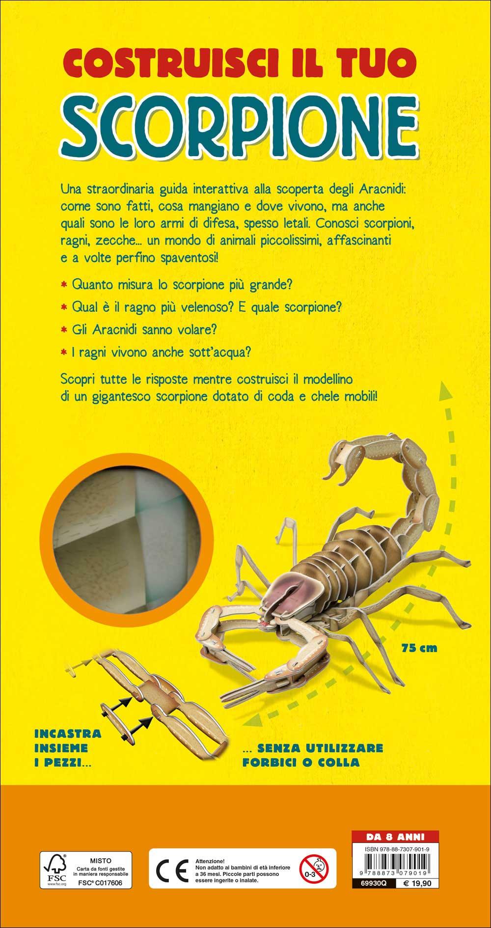 Costruisci il tuo scorpione e scopri il mondo degli aracnidi