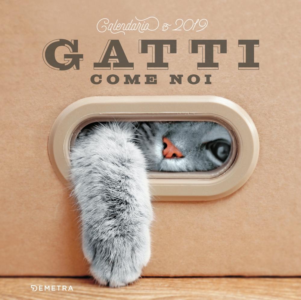 Gatti come noi - Calendario 2019