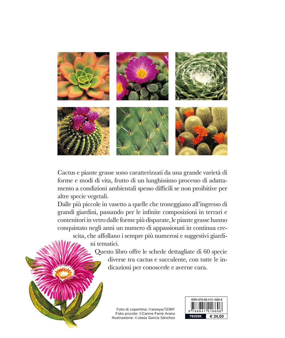 Terrario Per Piante Grasse il grande libro dei cactus e delle piante grasse - giunti