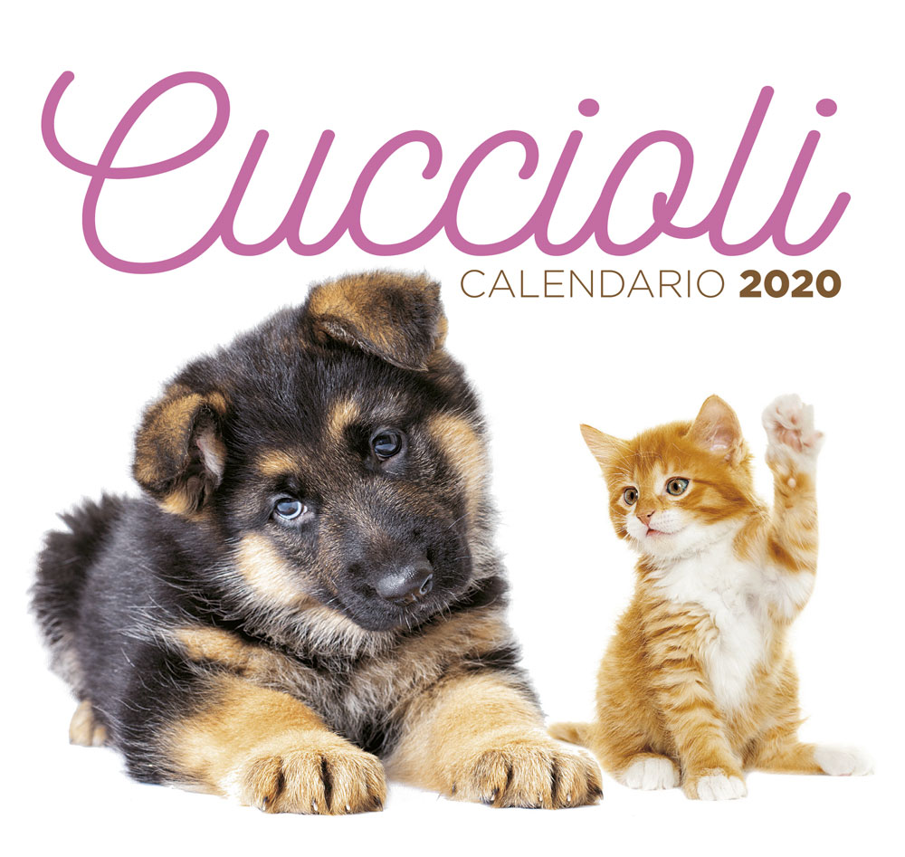 Calendario Cuccioli desk 2020