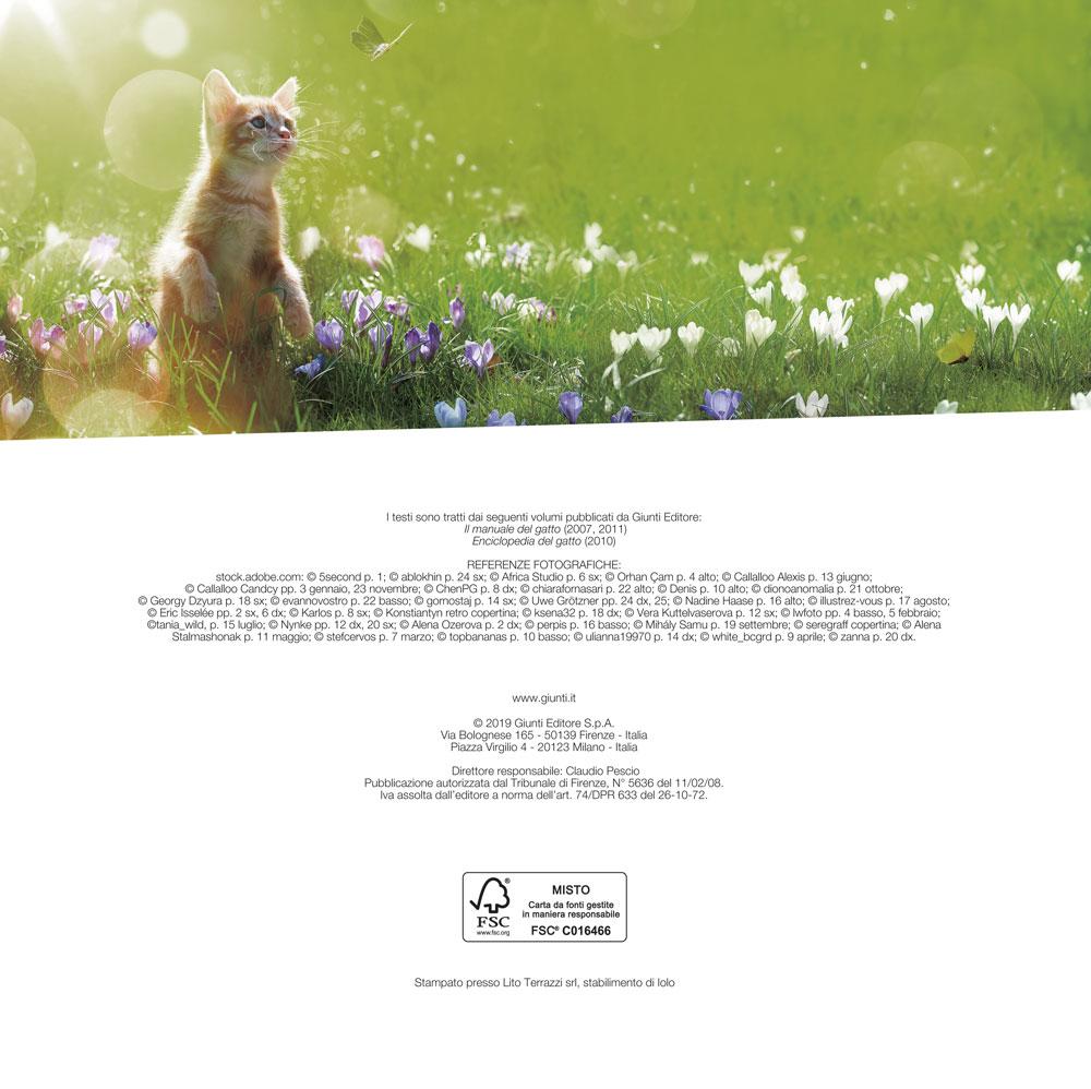 Gatti come noi - Calendario 2020