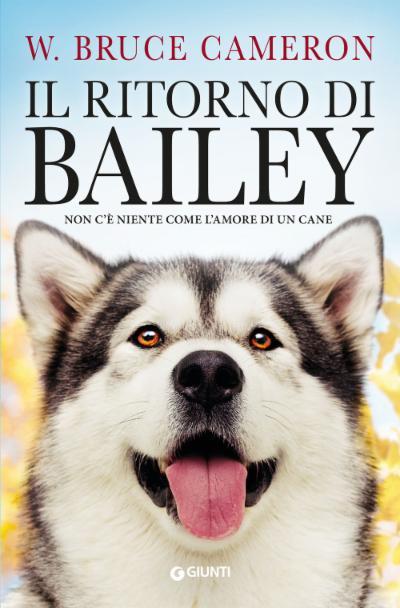 Il ritorno di Bailey