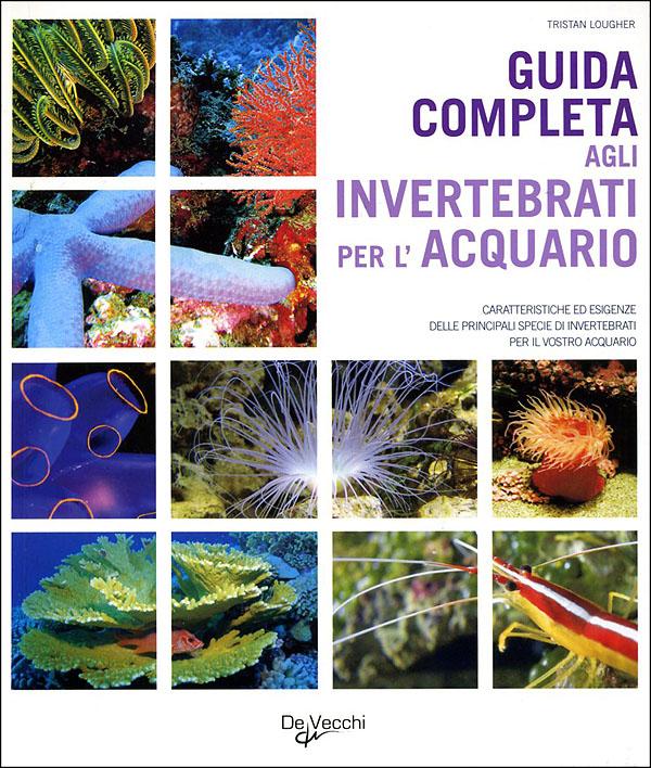 Guida completa agli invertebrati per l'acquario